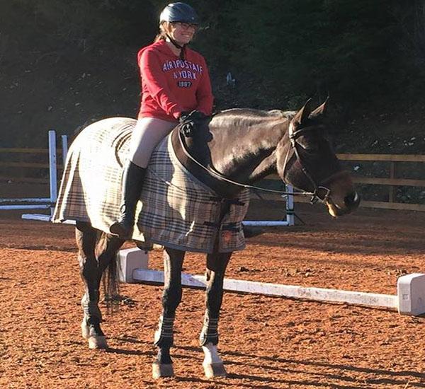 equine academy website
